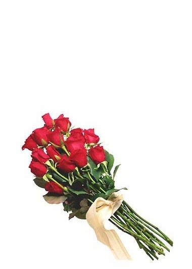 Aşkın En Sade Hali-56 Gaziantep Çiçek Sepeti Siparişi