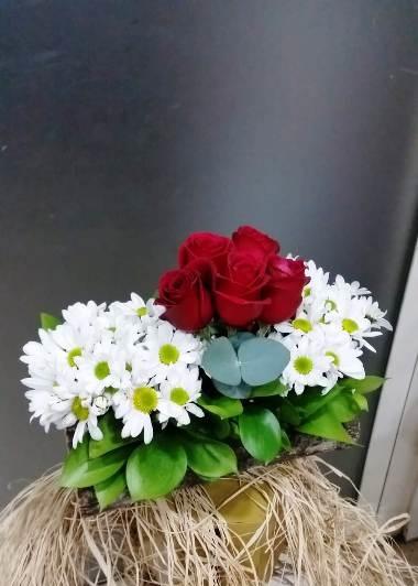 Doğal Güzellik Gaziantep Çiçekciler