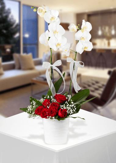 Orkide ve Gülün Zerafeti-66 Gaziantep Çiçek Sepeti Siparişi