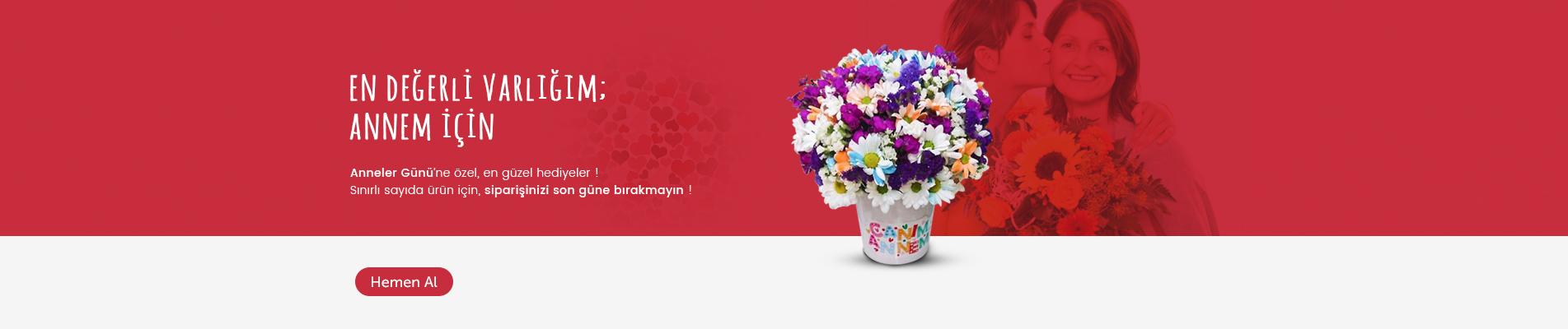 Gaziantep Çiçek Gönder Anneler Günü