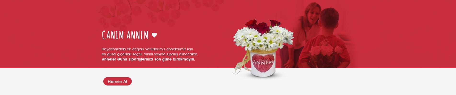 Gaziantep Çiçek Siparişi Anneler Günü